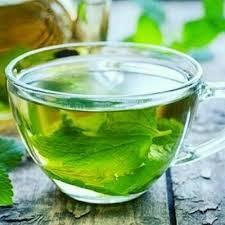 فواید درمانی گیاه پونه